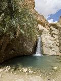 Desert Oasis, Chebika, Tunisia, North Africa, Africa Reproduction photographique par Ethel Davies