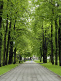 Esplanade, Green Park Near the Russian Orthodox Cathedral, Riga, Latvia, Baltic States Photographic Print by Gary Cook