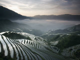 Sunrise in June, Longsheng Terraced Ricefields, Guangxi Province, China Impressão fotográfica por Angelo Cavalli