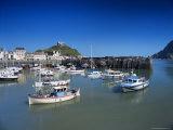 Harbour, Ilfracombe, North Devon, England, United Kingdom Photographic Print by Chris Nicholson