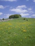 Alstonfield, Peak District National Park, Derbyshire, England, United Kingdom Fotografisk trykk av Roy Rainford