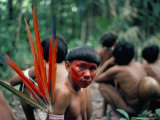 Yanomami Man Made up for the Feast, Brazil, South America Photographic Print by Robin Hanbury-tenison