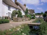 Thatched Cottages, Otterton, South Devon, England, United Kingdom Fotografisk tryk af Roy Rainford