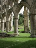 Rievaulx Abbey, North Yorkshire, England, United Kingdom Fotografisk tryk af Roy Rainford