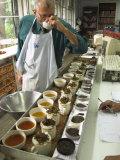 Ravi Kidwai, Tea Specialist, Tasting and Assessing Tea, Kolkata Photographic Print by Eitan Simanor