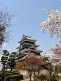 Cherry Blossoms, Matsumoto Castle, Matsumoto City, Nagano Prefecture, Honshu Island, Japan,Asia Photographic Print by Christian Kober
