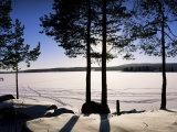 Lake Maridal (Maridalsvannet), Oslo's Reservoir, Oslo, Norway, Scandinavia Photographic Print by Kim Hart