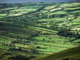 View Towards Lough Derg from Arra Mountains, County Clare, Munster, Republic of Ireland (Eire) Reproduction photographique Premium par Adam Woolfitt
