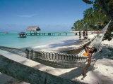 Hammock on the Beach, Tobago, West Indies, Caribbean, Central America Lámina fotográfica por Adam Woolfitt