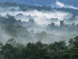 Regnskoven, fra Lubaantun til Mayabjergene, Belize, Centralamerika, Amerika Fotografisk tryk af  Upperhall