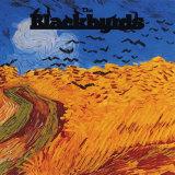The Blackbyrds - The Blackbyrds Posters