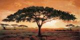 Erinnerungen der Masai Mara Kunstdrucke von  Madou