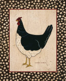 White Bellied Chicken Posters by Warren Kimble