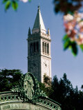 University of California, the Campanile, Alamada County, Berkeley, California Fotografisk tryk af John Elk III