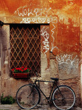 Bicycle Against Wall at Trastavere, Rome, Lazio, Italy Fotografisk tryk af Izzet Keribar