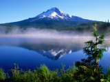 Trilium Lake with Mt. Hood in Background, Mt. Hood, Oregon Premium fototryk af John Elk III