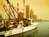 Fishing Boats at Harbour, Corpus Christi, Texas Fotografie-Druck von Witold Skrypczak