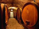 Aging Barrels in Castellina in Chianti Enoteca, Chianti, Tuscany, Italy Fotografisk tryk af John Elk III