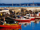 Fishing Boats in Harbour, Punta del Este, Maldonado, Uruguay Lámina fotográfica por Krzysztof Dydynski