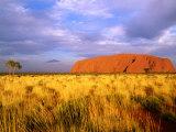 Uluru, Uluru-Kata Tjuta National Park, Northern Territory, Australia Reproduction photographique par John Banagan