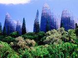 Tjibaou Arts and Cultural Centre, Noumea, South Province, New Caledonia Fotografisk tryk af Peter Hendrie