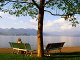 Benches at Lakeside Gardens on Lake Maggiore, Stresa, Piedmont, Italy Fotografie-Druck von Glenn Van Der Knijff