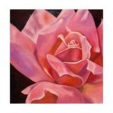 Röntgenaufnahme einer rosafarbenen Rose Kunstdruck von Hyunah Kim