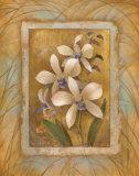 Illuminated Orchid I Posters par Elaine Vollherbst-Lane