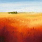 Red Fields II Konst av Hans Paus