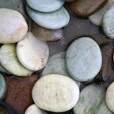 Stone Serenity I Photo by Nicole Katano