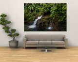Two Small Waterfalls Flow into Fresh Water Pond in a Rain Forest Fototapete von Todd Gipstein