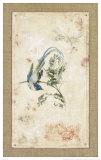 Asian Paradise Flycatcher Poster par Jillian David