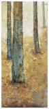Tranquil Forest I Láminas por Jill Barton