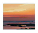 Sunset And Flight Reproduction pour collectionneur par Pam Carter