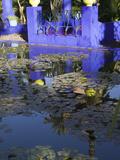 Villa Reflexion, Jardin Majorelle and Museum of Islamic Art, Marrakech, Morocco Fotografisk tryk af Walter Bibikow
