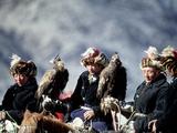 Eagle Hunters at the Golden Eagle Festival, Mongolia Fotoprint av Amos Nachoum