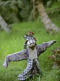 Village Scarecrow, Rice Fields, Near Tegallalan, Bali, Indonesia Photographic Print by John & Lisa Merrill