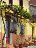 Yellow House, Agiasos, Lesvos, Mytilini, Aegean Islands, Greece Fotoprint van Walter Bibikow