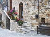 Flower-Lined Stairway, Petroio, Italy Fotografie-Druck von Dennis Flaherty