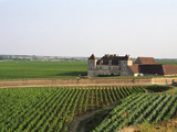 Clos De Vougeot, 16th Century Monastery and Vineyard, Les Petits Vougeots Vineyard Photographic Print by Per Karlsson