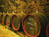 Kiralyudvar Winery Barrels with Tokaj Wine, Tokaj, Hungary Photographic Print by Per Karlsson