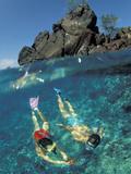 Couple Snorkeling Fotografie-Druck von Amos Nachoum