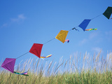 Kites on the Beach, Long Beach, Washington, USA Photographic Print by John & Lisa Merrill