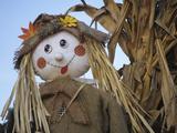 Scarecrow and Dead Corn Husks, Carnation, Washington, USA Photographic Print by John & Lisa Merrill