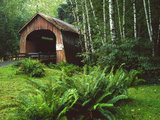 Yachats River Covered Bridge in Siuslaw National Forest, North Fork, Oregon, USA Photographic Print by Steve Terrill