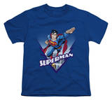 Youth: Superman - This Looks Like a Job for T-shirts
