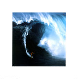 The Perfect Wave Affiches