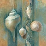 Ocean Treasures I Affiches par Elaine Vollherbst-Lane