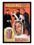Houdini's Death-Defying Mystery Kunstdrucke