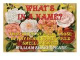 Qu'y-a-t-il dans un nom Affiche par William Shakespeare